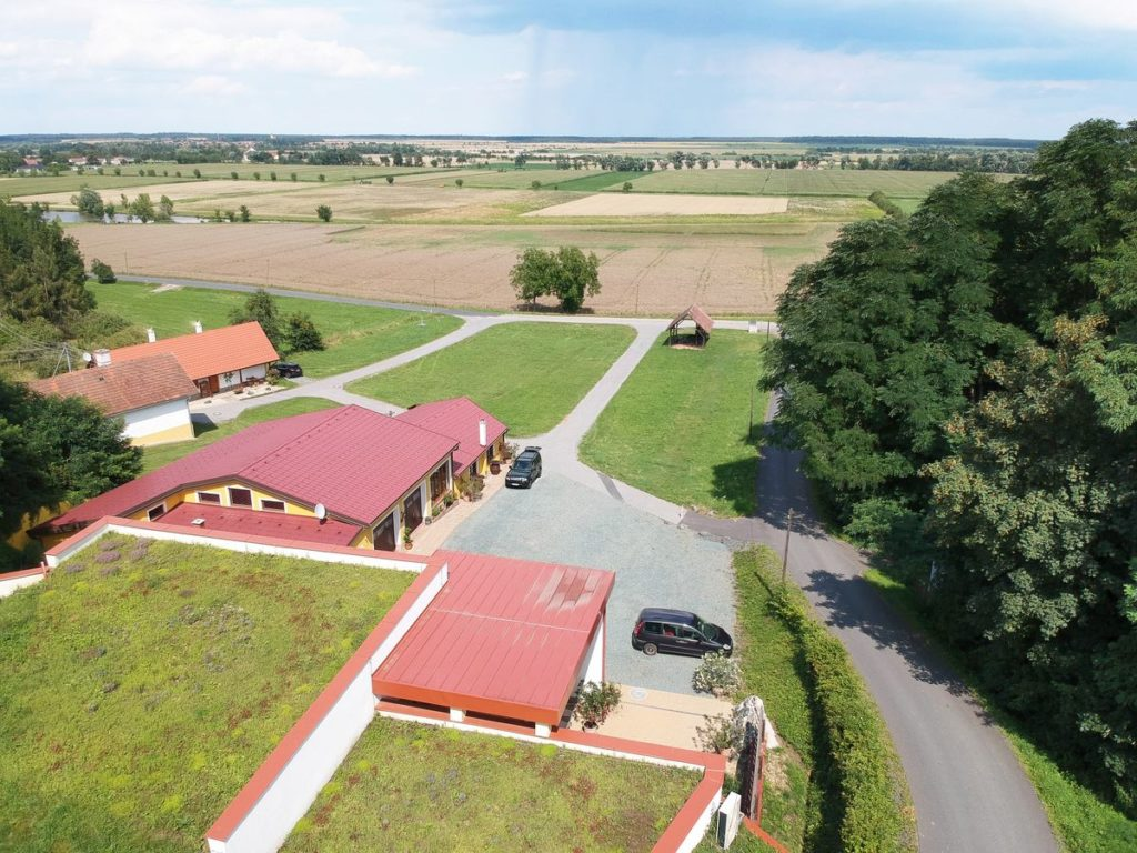 Large and successful vineyard for sale in Austria